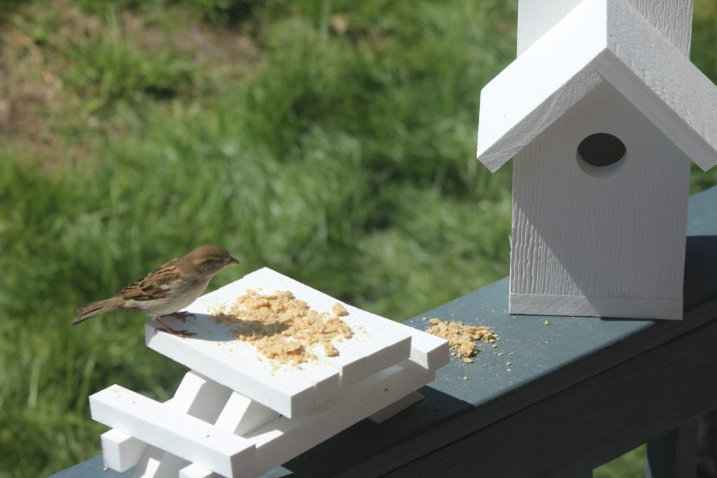 Simple birdhouse with picnic table